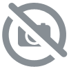 Tricycle EXPLORER 4 en 1 Rouge Globber